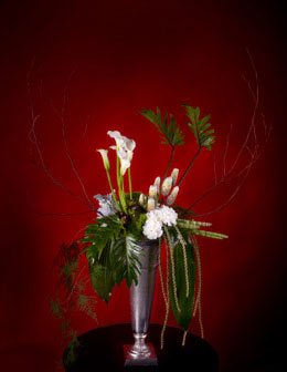 Floral Photography for Annex Publishing white flower in narrow vase Funeral Arrangement
