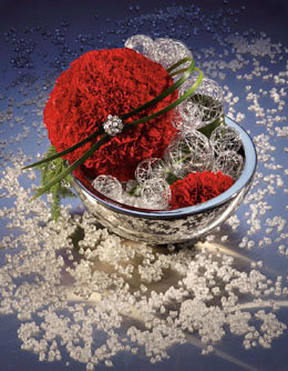 Flower Photography for Annex Publishing red flower in glass bowl Christmas arrangement