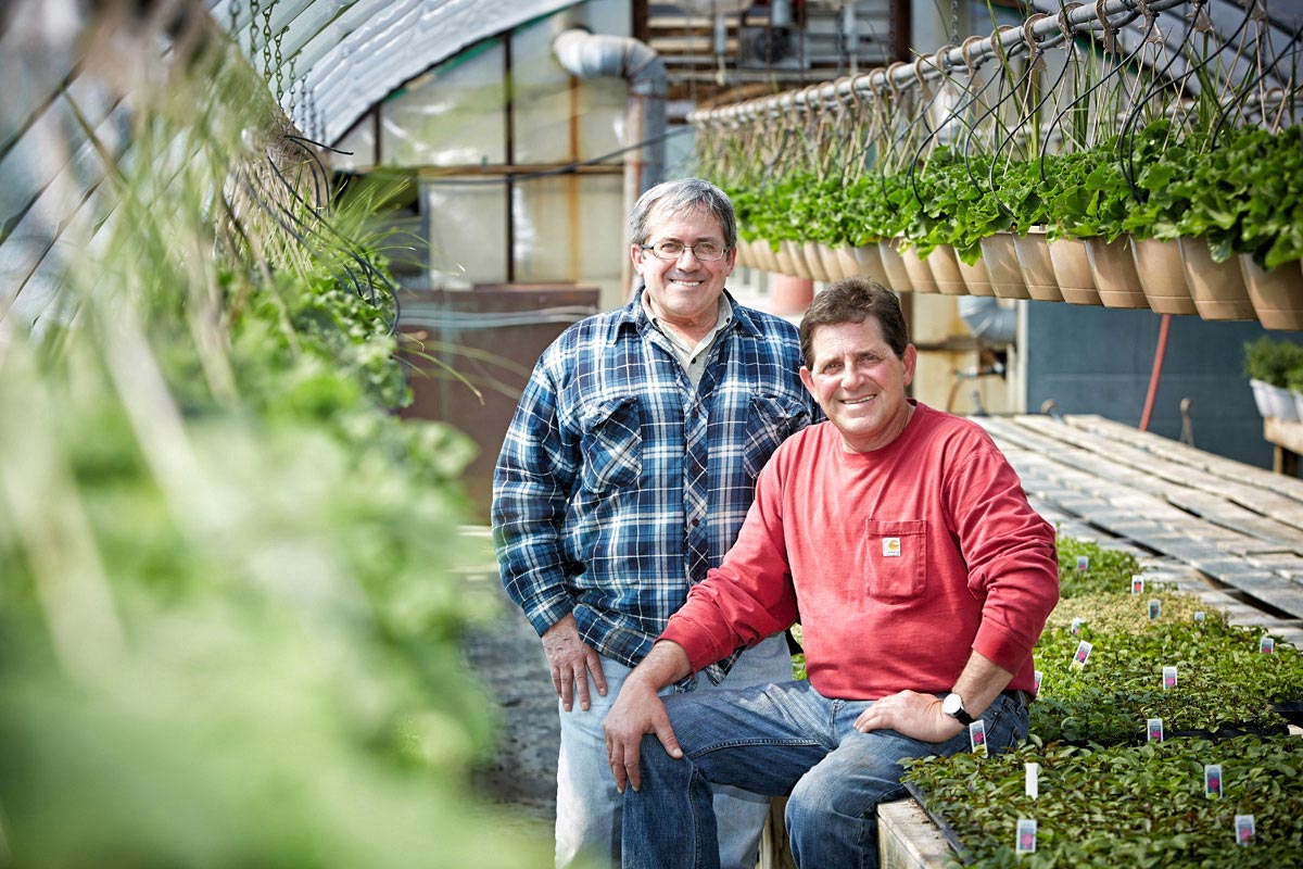 Farmer Group Portrait Photography of horticulturist in greenhouse for Longos